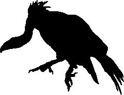 Vulture Download