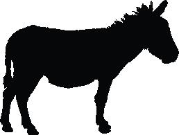 Mule Download
