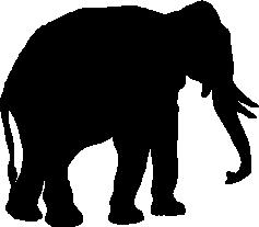 Elephant Download