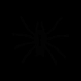Spider Download