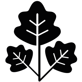 Tree Leaves Download